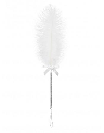 A716 Plumeau blanc - les nuances du désir